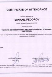 Сертификат проверка СИЗ Kong